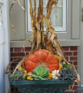 Event Fee:  Create a Long Lasting Fall Container Garden, Sat., Sept. 24th, 1-2pm