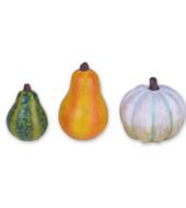 Mini Gourds S/3 asst.