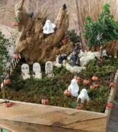 Event fee:  Halloween Fairy Gardens! Sat., Oct. 8th, 1-2pm