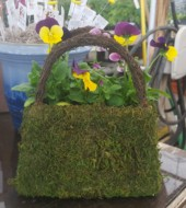 Event Fee:  Plant a MOSS purse! Tuesday, April 11th at 5:30pm
