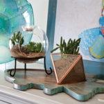 Create a Terrarium, Saturday, April 29th, 10am
