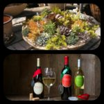 FIRST EVER Sip & Plant Succulent Potting Party @ Waltz Vineyards Wine Shop at Kitchen Kettle Village, Tues., May 2nd, 6-8pm