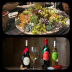 Sip & Plant Succulent Potting Party @ Waltz Vineyards Wine Shop at Kitchen Kettle Village, Tues., June 6th, 6-8pm