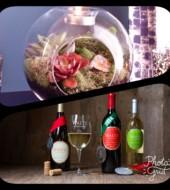 Event Fee:  Sip & Plant Terrarium Party at Waltz Vineyards Wine Shop, Thurs., July 20th @ 6:30pm